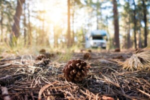 Best RV Parks in Northern Arizona